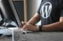 Tổng hợp các plugin cần thiết cho WordPress bạn phải biết